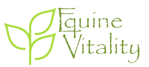 equestrian natural equine health supplements selling Horse health supplements and equestrian natural healthsupplements